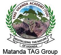 Matanda